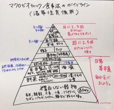 マクロガイドライン.jpg