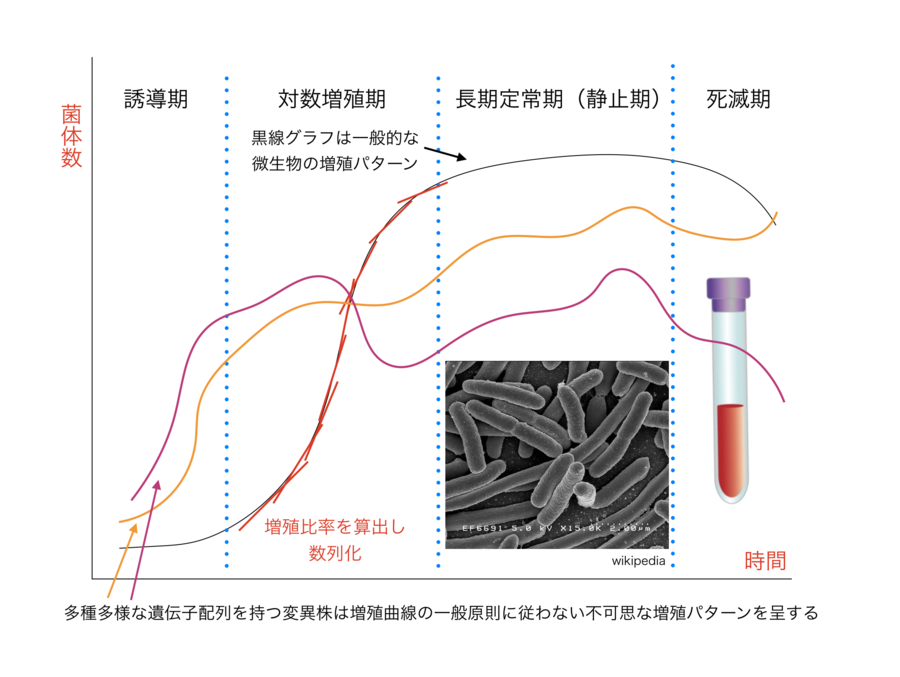 mutant bacterial growth curve.png